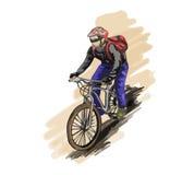 Een mens berijdt op een een bergfiets of fiets Stock Foto