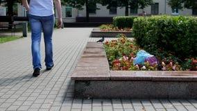 Een mens in de stad stapt en werpt een pakket van huisvuil op een bloembed, huisvuil in de stad, een probleem op stock video