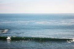 Een mens die de golven surfen Royalty-vrije Stock Afbeeldingen
