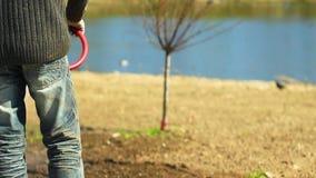 Een mens die het gazon met een slang water geven stock video