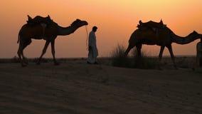 Een mens die in een woestijn lopen stock video