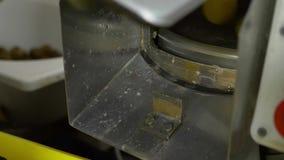Een mens drukt een knoop en draaien van de machine om groenten schoon te maken stock videobeelden