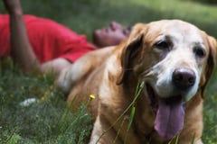 Een mens en Zijn hond Royalty-vrije Stock Foto's