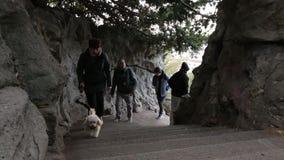 Een mens gaat in het park uit De mensen dalen en beklimmen op de treden stock footage