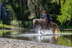 Een mens in een hoed op horseback kruist de rivier bij een galop en bespuit rond vlieg stock foto