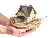 Een mens houdt een vogelsnest met een miniatuur binnen huis Stock Fotografie