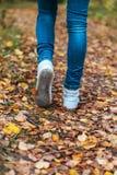 Een mens houdt op lopend Het meisjes` s meisje ` s Hete meisjes op de aard in het park onder de bladeren van geel De herfst Stock Afbeelding