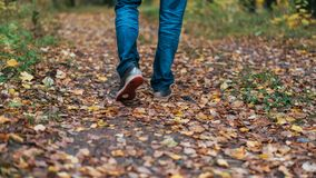 Een mens houdt op lopend Het meisjes` s meisje ` s Hete meisjes op de aard in het park onder de bladeren van geel De herfst Royalty-vrije Stock Foto's