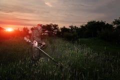 Een mens maait het gras in de tuin met een snoeischaar bij dageraad Royalty-vrije Stock Foto