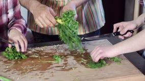 Een mens onderwijst meisjes om greens te snijden - peterselie en dille stock video