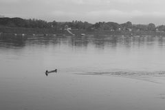 Een mens op een boot in Mekong rivier in Loei-provincie Royalty-vrije Stock Fotografie