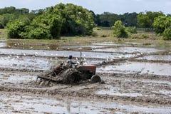 Een mens op het tractor het ploegen padieveldennoorden van Anuradhapura in Sri Lanka stock foto