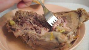 Een mens verzamelt vlees van een gegeten karkas van een konijn met een vork stock video