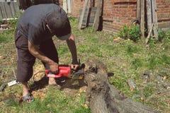 Een mens zaagt een boom met een elektrische zaag in de yard stock fotografie