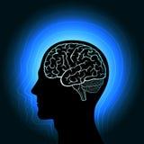 Een menselijk hoofd met een gloeiend overzicht van de hersenen en het uitstralen van haar in golven Stock Afbeeldingen