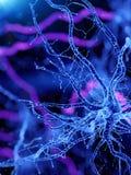 een menselijke actieve zenuwcel royalty-vrije illustratie