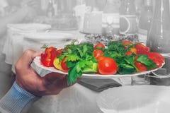 Een mensen` s hand houdt een plaat van groene kruidensalade Het concept alternatieven voor gezond het eten en gewichtsverlies royalty-vrije stock afbeelding
