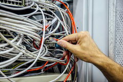 Een mensen` s hand houdt serverkabel in de ruimte van de netwerkserver royalty-vrije stock afbeelding