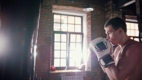 Een mensenbokser die met een ponsenzak opleiden in de gymnastiek stock video