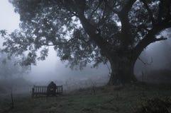 Een mensenzitting met een kap op een bank in het platteland op een mistige, humeurige dag Met gedempt, korrelig geef uit stock foto