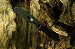 Een mes in een boom wordt geplakt die Zwart militair mes royalty-vrije stock foto's