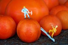 Een Miniatuurarbeider bovenop een Cherry Tomato And Another Miniature-Arbeider die op een Ladder beklimmen royalty-vrije stock foto's