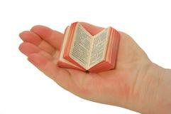 Een miniatuurboek op de palm Stock Afbeeldingen