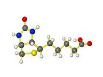 Een molecule van vitamine b7 Stock Fotografie