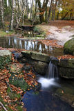 Een mooi beeld van een nationaal park, waar Na royalty-vrije stock foto's