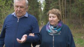 Een mooi bejaard paar, die in het park lopen, die vriendelijk spreken Goede stemming, het positieve leven stock video