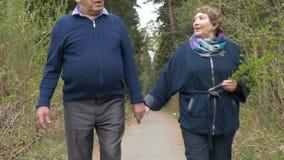 Een mooi bejaard paar, die in het park lopen, die vriendelijk spreken Goede stemming, het positieve leven Liefde elkaar, greephan stock footage