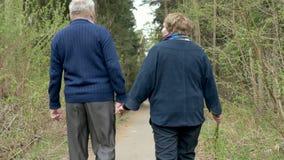 Een mooi bejaard paar, die in het park lopen, die vriendelijk spreken Goede stemming, het positieve leven Liefde elkaar, greephan stock videobeelden