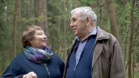 Een mooi bejaard paar die in het park voor een gang spreken Zij communiceren, lachen, koesteren Uitstekende verhouding, de leefti stock videobeelden