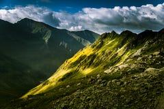 Een mooi berglandschap in Karpatische bergen Stock Foto's