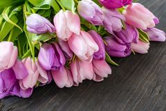 Een mooi boeket van tulpen met een witte kop voor thee De ruimte van het exemplaar stock afbeeldingen