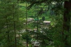 Een Mooi die Dorp door Deodar Tree in Himalayagebergte wordt omringd, Sainj-Vallei, Himachal Pradesh, India stock afbeelding