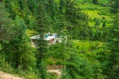 Een Mooi die Dorp door Deodar Tree in Himalayagebergte wordt omringd, Sainj-Vallei, Himachal Pradesh, India royalty-vrije stock afbeeldingen