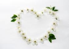 Een mooi die hart van bloemen wordt gemaakt Witte en blauwe bloemen in Royalty-vrije Stock Foto