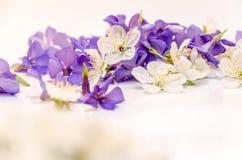 Een mooi die hart van bloemen wordt gemaakt Witte en blauwe bloemen in Stock Foto's
