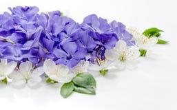 Een mooi die hart van bloemen wordt gemaakt Witte en blauwe bloemen in Stock Fotografie