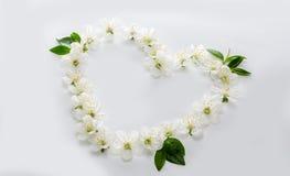 Een mooi die hart van bloemen wordt gemaakt Witte en blauwe bloemen in Stock Foto