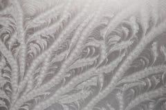 Een mooi die patroon door vorst op glas wordt gecreeerd Stock Fotografie