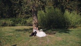 Een mooi jong paar zit in het bos onder een mooie boom Mooie aard rond Een prachtig paar in liefde stock videobeelden