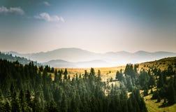 Een mooi Karpatisch landschap Stock Foto's
