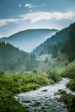 Een mooi Karpatisch landschap met een bergrivier Royalty-vrije Stock Foto