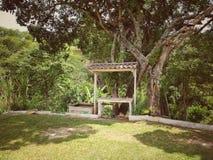 Een mooi landschap met bomen in boerderij royalty-vrije stock fotografie