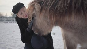 Een mooi meisje in een de winterlaag strijkt een prachtige poney op een boerderij van het land Paardengang in openlucht in de win stock videobeelden