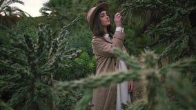 Een mooi meisje onderzoekt het cactussenpark stock footage