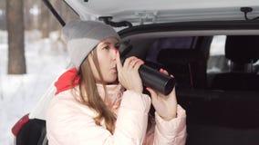 Een mooi meisje zit in een witte auto op zonnige de winterdag in bos, drinkt thee stock footage