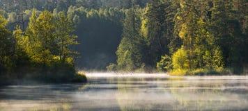 Een mooi Witrussisch die landschap in het gebied van duizend meren, in Wit-Rusland wordt genomen Wij kunnen meer en bossen met oc Royalty-vrije Stock Afbeelding